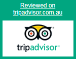 star bar hotel on trip advisor launceston